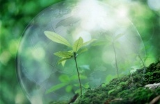 В Саратовской области по материалам природоохранного прокурора по факту порчи земли возбудили уголовное дело