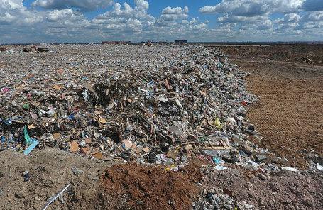 Подмосковье вышло на «мусорный митинг»