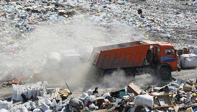 Депутат: нужно внести поправки в законодательство о раздельном сборе мусора