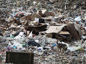 К 2020 году в России построят 210 комплексов по переработке мусора