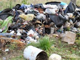Экологическую политику правительства РФ признали неэффективной