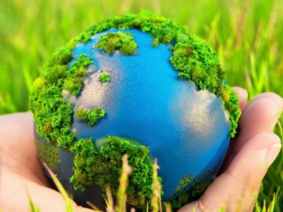 Министерство экологии: итоги и планы в цифрах