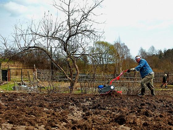 Дачникам, желающим строиться, грозят археологические раскопки