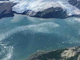 Морозоустойчивые микробы помогут защитить Арктику от разливов нефти