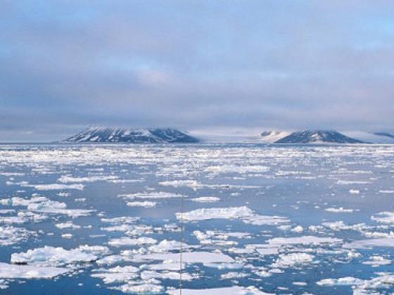 Арктика Газпром