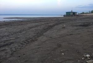 Власти Татарстана опасаются концентрации вредных веществ из-за обмеления Волги