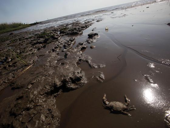 В Чили произошел разлив 40 тыс. литров дизельного топлива