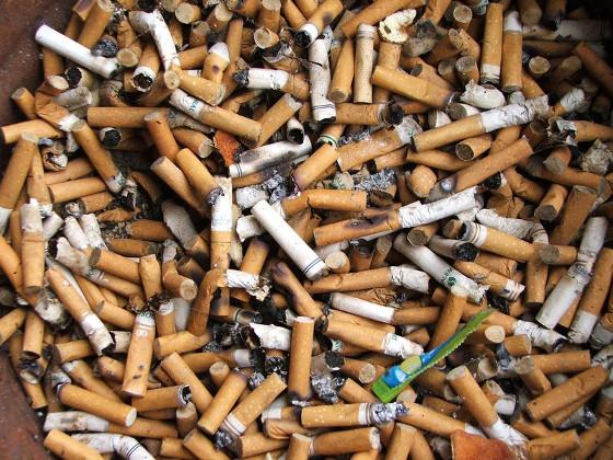 WSJ: токсичные вещества в окурках сигарет представляют угрозу для экологии