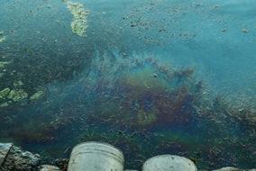 В Сербии остановили разлив мазута в реку
