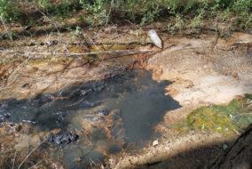 В Калужской области предприятию грозит уголовное дело по факту загрязнения почвы