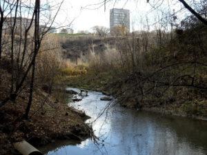 В Росприроднадзоре назвали главные экологические проблемы Прикамья