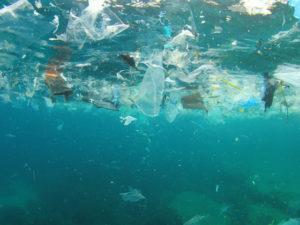 Ученые зафиксировали частицы микропластика на всем протяжении Северного морского пути