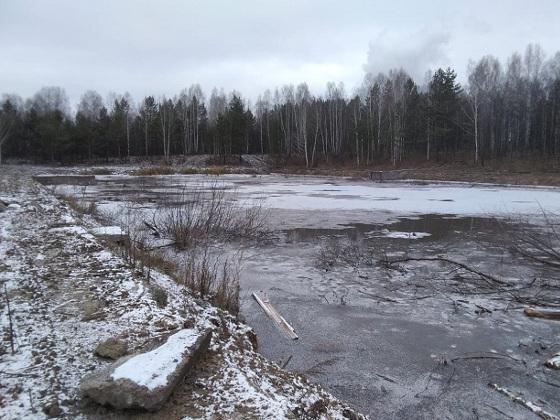 Томская общественная палата пошла «на запах»