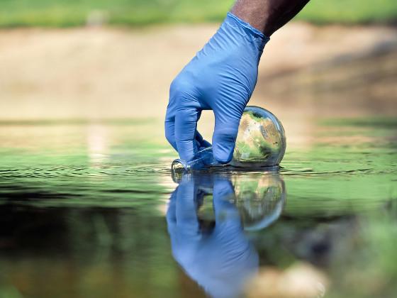 Экологи взяли пробы воды из