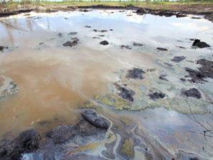 В Астрахани продолжаются эко-скандалы