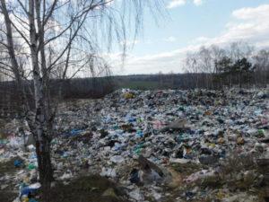 Жители Болхова жалуются на огромную свалку