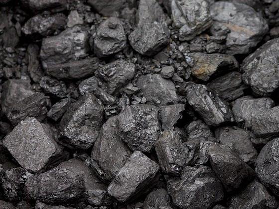 Сын Солженицына возглавил крупнейшую угольную компанию РФ