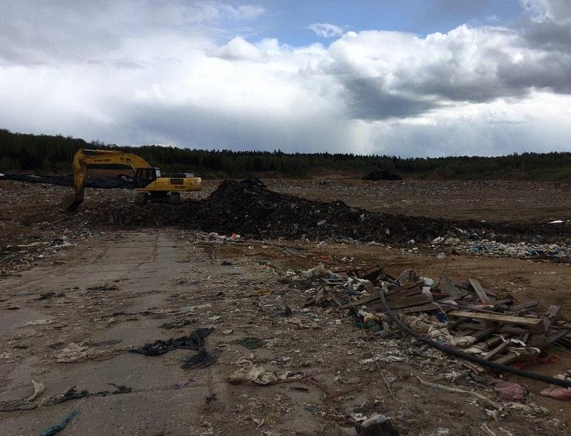 Минэкологии: с площадки временного накопления в Рузе вывезено свыше 20 тысяч тонн отходов