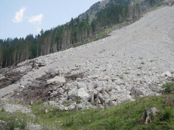 Новосибирский суд запретил работы на отвале, где сошел грязевой сель