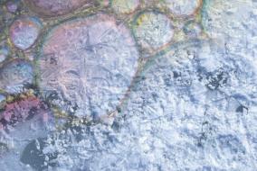 Общественники Минприроды предлагают полностью отказаться от нефтепродуктов в Арктике