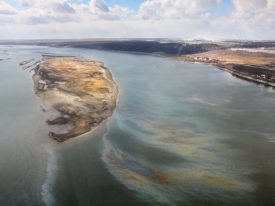 Более 20 тыс. нарушений в сфере природопользования выявлено в РФ с 2018 года