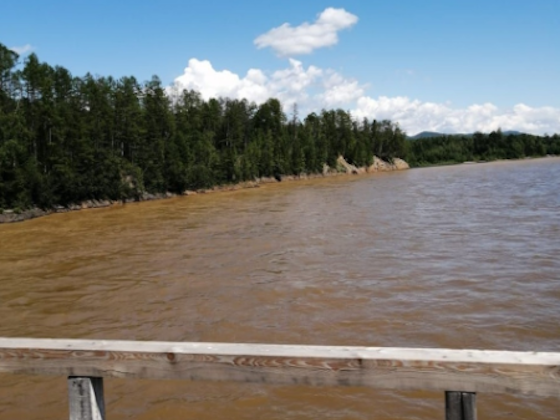 Золотодобывающие артели продолжают загрязнять реки