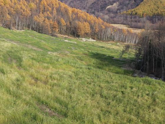 ВГК провела рекультивацию 22 гектаров земли Солнцевского угольного разреза