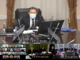 На заседании Общественного совета Росатома рассмотрели итоги реализации национального проекта «Экология»