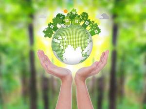 В России создадут систему управления климатическими рисками