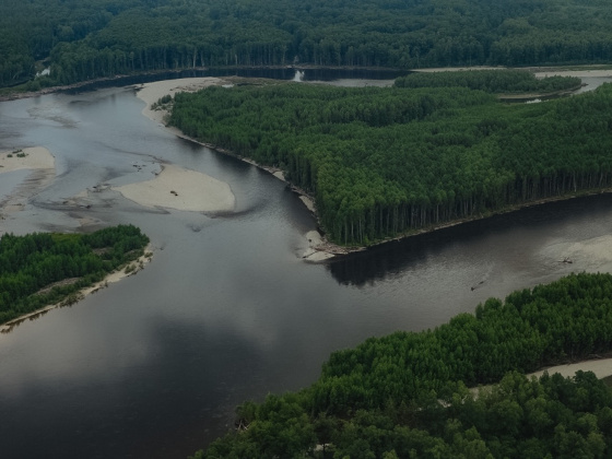 Золотодобытчики нанесли ущерб водоемам Приамурья на 151 млн рублей