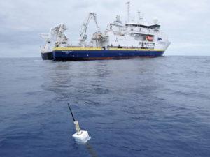 «Газпром» проведет экомониторинг своих морских участков