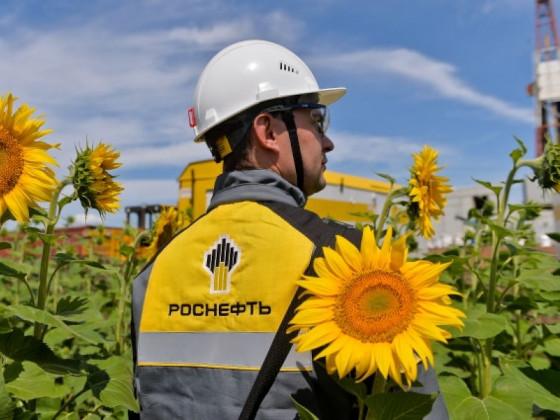 «Роснефть» направила 42 млрд рублей на зеленые инвестиции в 2020 году